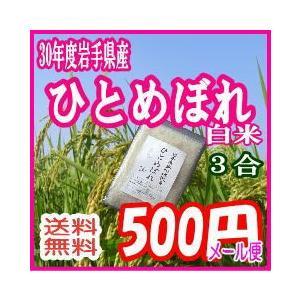 ポイント消化 送料無料 お試し 食品 メール便 500円 白...