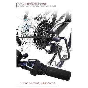 電動アシスト自転車 [ 最大1億の賠償責任保険付 ] 20インチ AIJYU CYCLE パスピエ20R 折りたたみ 電動自転車/折畳み自転車|three-stone-ys|09