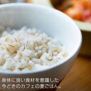 炊飯器 圧力 IH タイガー JPB-H102KU ブラック 5.5合 土鍋 コーティング 圧力 IH 炊飯ジャー 圧力IH炊飯器 5合|tiger-online|04