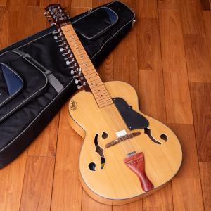 インドのスライド・ギター モハーンヴィーナ / レビューで300円クーポン進呈 ギター民族楽器 アジア エスニック 弦楽器|tirakita-shop