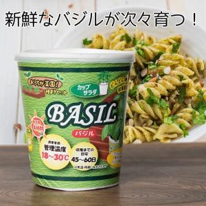 育てて食べるカップサラダ。- バジル栽培キット 【Forest】 / バジル、BASIL、栽培、キッ...