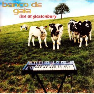 benco de gaia - live at glastonbury /  Planet Dog ...