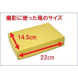 ギフト用 包装紙 「モダン」 9911-01|tkcollection|04