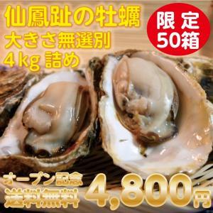 牡蠣 送料無料 オープン記念  仙鳳趾の牡蠣40個以上保証 4kg詰め 大きさ無選別|tkhs946