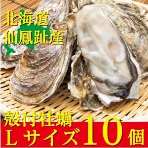 北海道仙鳳趾(せんぽうし)殻付牡蠣 Lサイズ(200g〜249g) 10個入り|tkhs946