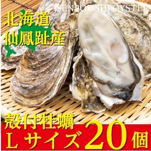 北海道仙鳳趾(せんぽうし)殻付牡蠣 Lサイズ(200g〜249g) 20個入り|tkhs946
