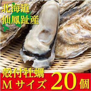 北海道仙鳳趾(せんぽうし)殻付牡蠣 Mサイズ(150g〜199g) 20個入り|tkhs946