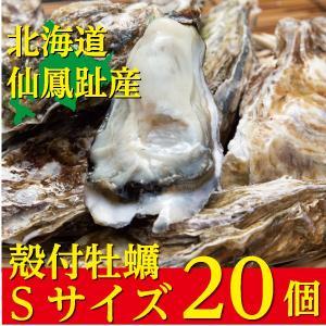 北海道仙鳳趾(せんぽうし)殻付牡蠣 Sサイズ(90g〜149g) 20個入り|tkhs946