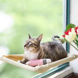 窓に取り付けて使う ハンモックベッド 窓からの温かい日差しを受けながらお昼寝が出来る 猫用 ハンモッ...