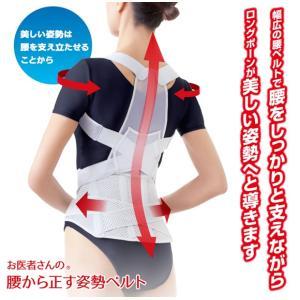 お医者さんの腰から正す姿勢ベルト 背筋 矯正 補正 姿勢 腰 腰痛 ヘルニア サポート|tkp