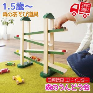 知育玩具 エド・インター 森のあそび道具 森のうんどう会 3歳から 誕生日プレゼント ギフト用 学習 教育玩具|tl-star