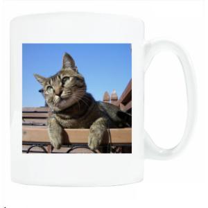送料無料 マグカップ (ライト) The Cat who.... 猫は考える ( 直径8×高さ9.2cm ザ・キャットフー アオゾラフタリネコ 名入れ可能 Art MugCup Cats)|tm1