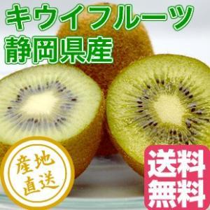 キウイ ヘイワード フルーツ fruits 静岡県産 送料無料 Sサイズ 家庭用3kg箱 40〜50個入り