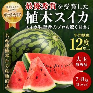 スイカ フルーツ Fruits 最優秀賞受賞 植木すいか 熊本県植木産 特秀 大玉 2Lサイズ7〜8...