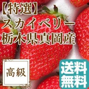 特選完熟 スカイベリー 栃木県真岡産 大粒 いちご ギフト 贈答用2パック入り約620g 送料無料