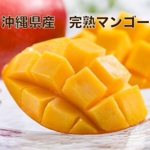 お中元 ギフト マンゴー フルーツ 完熟 沖縄マンゴー 秀品 1.4kg以上 4〜6玉 化粧箱入り 送料無料 果物|tms4