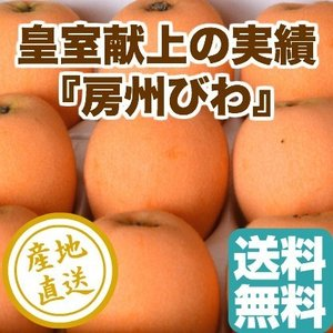 びわ フルーツ fruits 皇室献上の品質 房州びわ 3Lサイズ12粒入り化粧箱 千葉県富里産 送料無料 産地直送