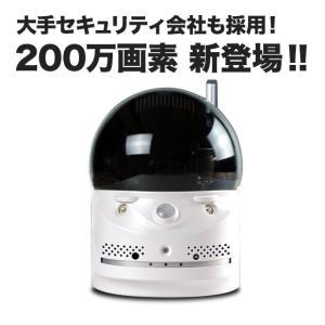 ペットモニター ベビーモニター 介護 など簡単監視 音声も聞ける フルHD ネットワークカメラ SX-704|tmts