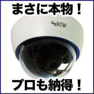 ダミーカメラ/屋内ドーム 1台 防犯カメラ|tmts