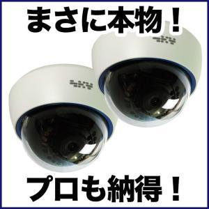ダミーカメラ/屋内ドーム 2台セット 防犯カメラ|tmts