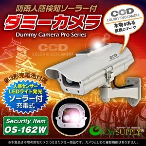 ソーラー 屋外用ダミーカメラ 電池式 ダミーカメラ センサーライト 監視カメラ tmts
