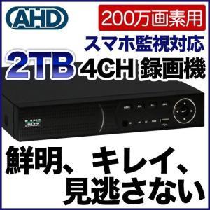 200万画素 防犯カメラ 最大4台まで接続可能 録画機 2000GBハードディスク搭載 DVR SKY-2M4C-2T tmts