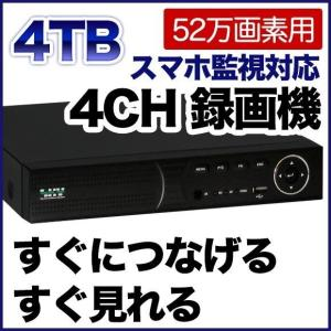 52万画素 防犯カメラ 最大4台まで接続可能 録画機 4000GBハードディスク搭載 DVR SKY-524C-4T tmts
