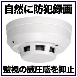 火災報知器型カメラ 煙探知機型カメラ 防犯ビデオカメラ H.264 1200万画素 16GB|tmts
