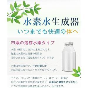 スーパーSALE!!【新品】 SKR コンパクト水素水生成器ボトル H60006 シルバー※メイン画像等ブルー使用|to-rulease|03