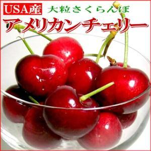 さくらんぼ アメリカンチェリー 約2kg アメリカ産 USAチェリー サクランボ|桜ん坊 お中元 プレゼント ギフト フルーツ