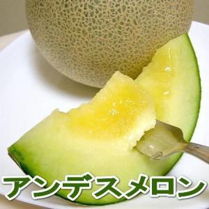 送料無料 訳あり  アンデスメロン  4〜6個入り 緑肉メロ...
