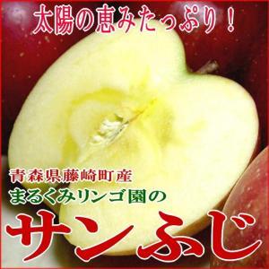 送料無料  藤崎町 まるくみりんご園 のサンふじリンゴ 訳あ...