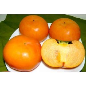 奈良産  富有柿(ふゆうがき) 7.5kg 2Lサイズ 24個前後入り
