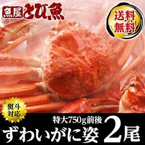 カニ かに 蟹 ズワイガニ 特大 ボイルずわいかに 姿 約750g前後×2尾 ズワイ ずわい 化粧箱...