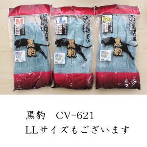 外縫いCV-621 tobiwarabiueda