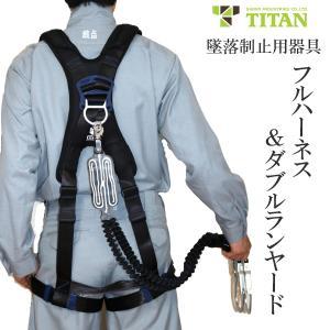 墜落制止用器具 タイタン PANGAEAフルハーネスと蛇腹ランヤードのセット |tobiwarabiueda