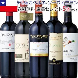 カベルネ・チリワイン フルボディ5本セット 店長セレクトのチリ産カベルネ・ソーヴィニヨン