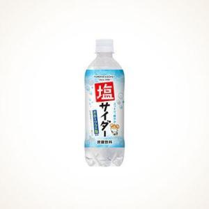 サッポロウエシマコーヒー オホーツク塩サイダー 500ml×24本|tochishou