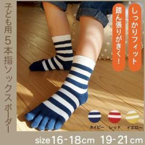 子ども用5本指ソックス/ボーダー(16〜18cm/19〜21cm)|tocochan