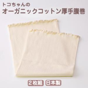 厚手腹巻 オーガニックコットン M L 2枚組 トコちゃんベルト 青葉|tocochan