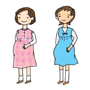トコちゃんベルト2 Lサイズ 青葉 骨盤ベルト 妊娠中 産後 腰痛 安産|tocochan|11