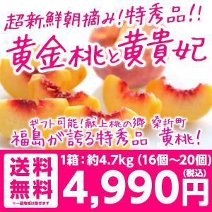 桃 福島 献上桃の郷 特秀品 黄桃 たっぷり5kg 15〜18玉  送料無料 ロイヤルピーチ|tohoku-happy