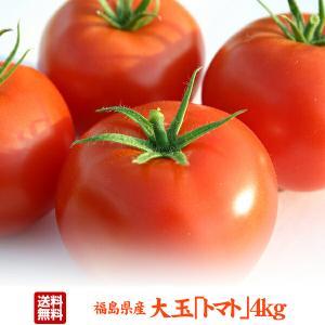 クーポン使用で20%OFF 福島県産 大玉 トマト 4kg 酸味と甘みのバランスが絶妙|tohoku-happy