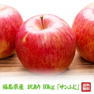 訳あり 福島県産 りんご 10kg(26玉〜40玉)  サンふじ 送料無料 ご注文時期に合わせて最適な品種を出荷|tohoku-happy