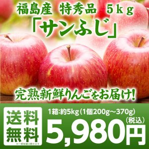 特秀品 福島県産りんご サンふじ 5kg(13玉〜20玉) ご注文時期に合わせて最適な品種を出荷 送料無料 りんご サンふじ 贈答用 ギフト|tohoku-happy