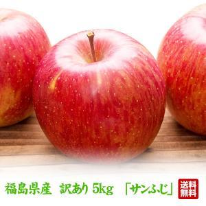訳あり 福島県産 りんご  5kg(13玉〜20玉) サンふじ送料無料 ご注文時期に合わせて最適な品種を出荷|tohoku-happy
