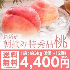 桃 特秀 桃3kg 山形県産 桃  新鮮な桃を朝摘みで産地直送します あかつき 川中島 伊達の桃 約3kg 約8個〜14個 送料無料|tohoku-happy