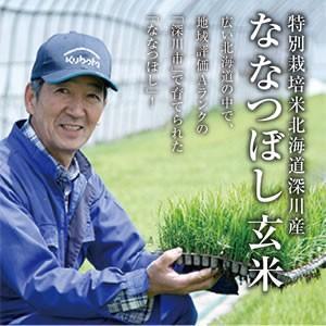 玄米|特別栽培米深川産ななつぼし(30kg)|tokachi-mahoroba