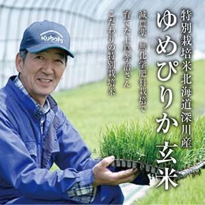 玄米|特別栽培米北海道深川産ゆめぴりか(30kg)|tokachi-mahoroba