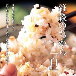 雑穀のちから「白」250g×6入|tokachi-mahoroba